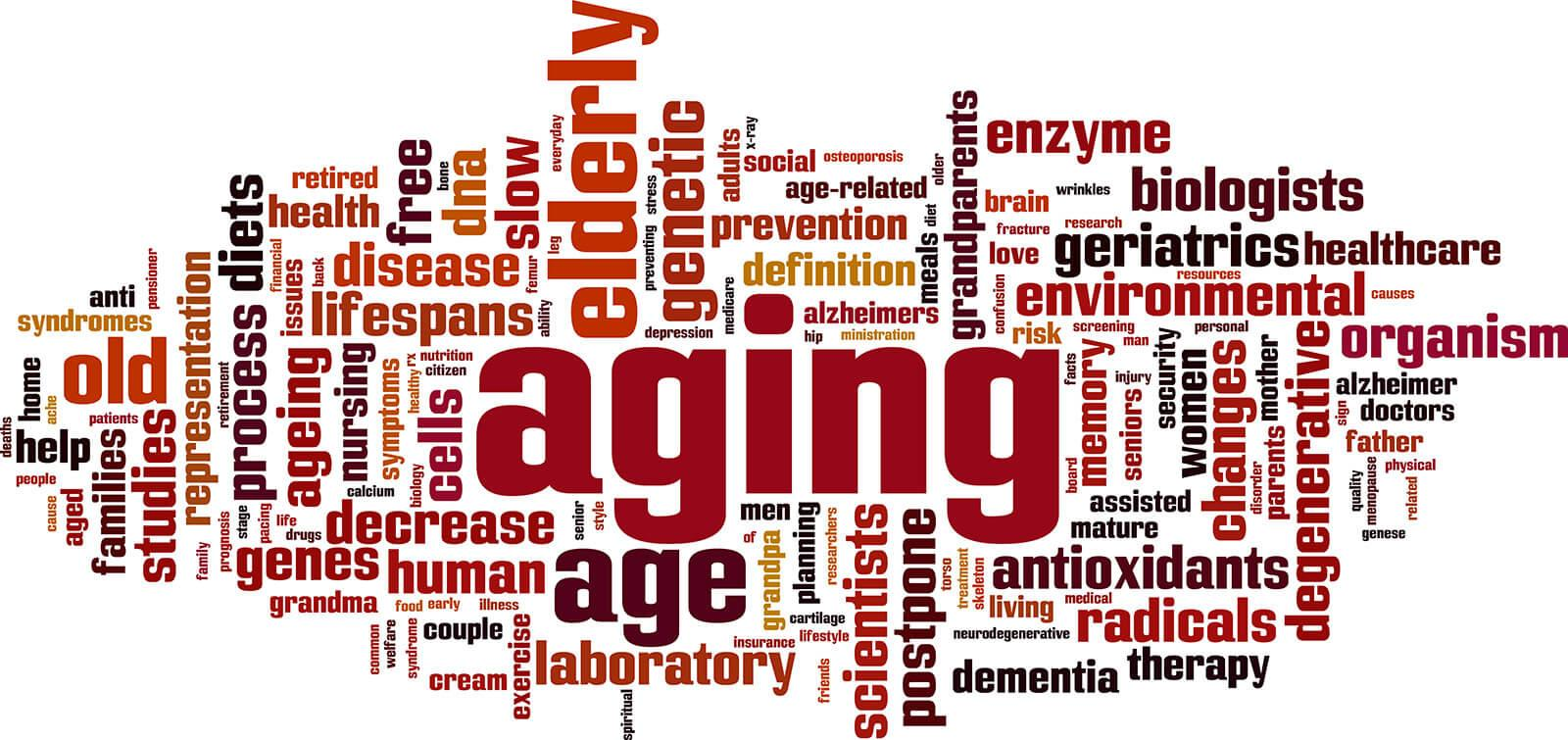 Aging and Evolution